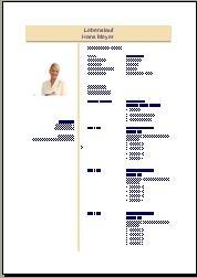 Bewerbung Als Controller Controllerin Bewerbungsschreiben Und